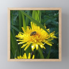 Pure Nature 4 Framed Mini Art Print