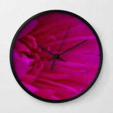 Pink  Chrysanthemum  Wall Clock
