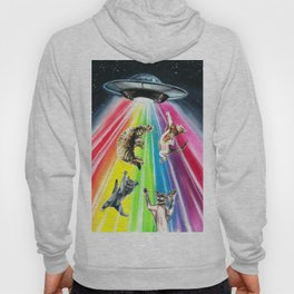 Space cats Hoody