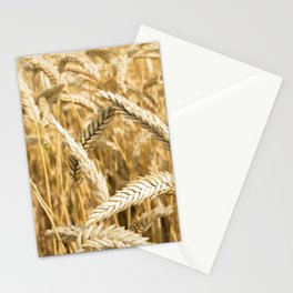 Farmers Best Stationery Cards