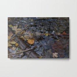 Fall Has Fallen Metal Print