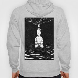 Seeing the Truth Hoody