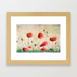 poppy in the wind Framed Art Print