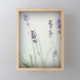 Memories of Provence Framed Mini Art Print