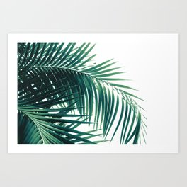 Palm Leaves Green Vibes #6 #tropical #decor #art #society6 Art Print