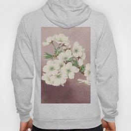 Shirayuki - White Snow Cherry Blossoms Hoody