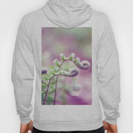 Ferns in Green, Purple, and Pink Hoody