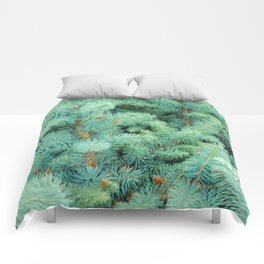 Thorns of Fir Comforters