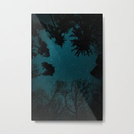 Tall Forest Trees Under a Starry Sky Metal Print