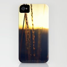 Prairie Sun iPhone (4, 4s) Slim Case