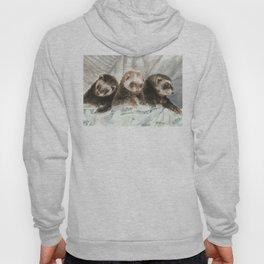 Lovely ferrets Hoody