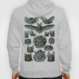 Ernst Haeckel Bats Moonlight Hoody