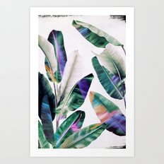 tropical #1 Art Print