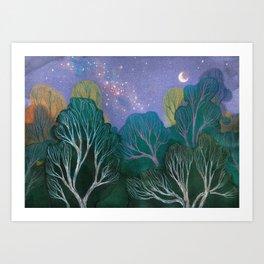 Starlit Woods Kunstdrucke