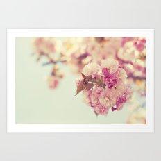 Cherry Spring Art Print