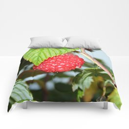 Single Red Raspberry After the Rain Comforters