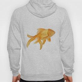 Curious Goldfish Hoody