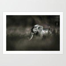 Plastic elephant toy Art Print
