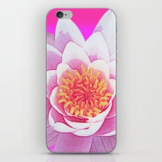 Ninfea Rose iPhone & iPod Skin