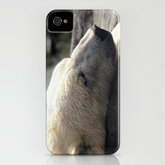 A polar bears' sweet dreams Slim Case iPhone (4, 4s)
