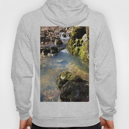 Alone in Secret Hollow with the Caves, Cascades, and Critters, No. 8 of 20 Hoody