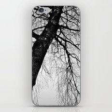 Intricacy iPhone & iPod Skin