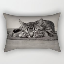Sleepy Kitty Rectangular Pillow