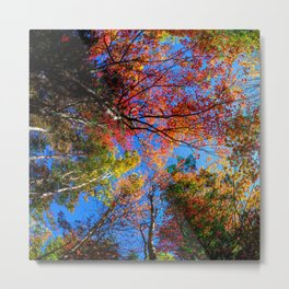 Colorful, Autumn In New Hampshire by OLena Art Metal Print