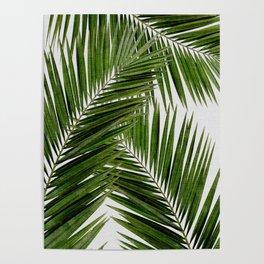 Palm Leaf III Poster