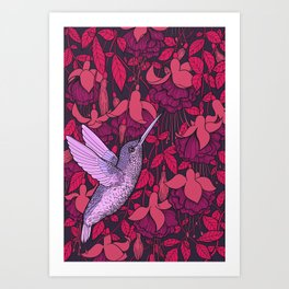 Hummingbird and fuchsia Art Print