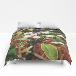Brittle Flower Comforters