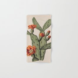 Botanical Cactus Hand & Bath Towel