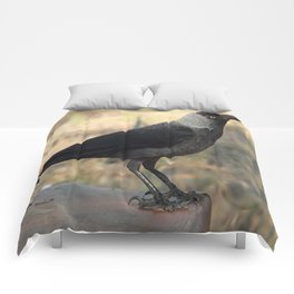 Side View Of A Wild Jackdaw Comforters