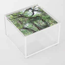 Hiking in Florida Acrylic Box
