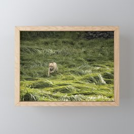 Happiness is Running Through a Field of Grass Framed Mini Art Print
