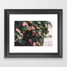 Hanging Flowers, Bali Framed Art Print
