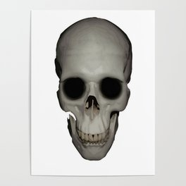 Human Skull Vector Isolated Poster