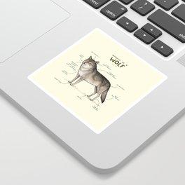 Anatomy of a Wolf Sticker