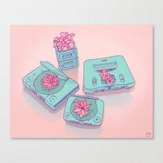 Flowers & Consoles Canvas Print