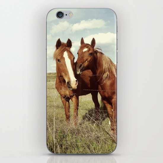 Horse Affection iPhone & iPod Skin