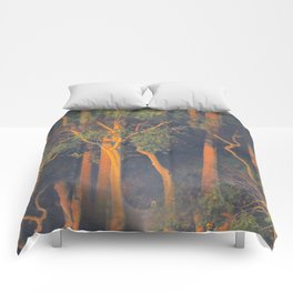 Trees Through Fog at Sunrise Comforters