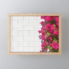 Bougainvilleas and White Brick Wall in Palm Springs, California Framed Mini Art Print