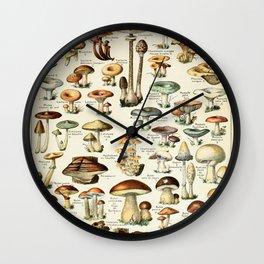 Vintage Mushroom & Fungi Chart by Adolphe Millot Wall Clock