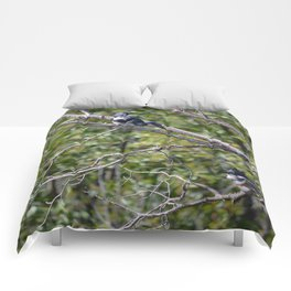 Two 4 One - Belted Kingfisher Comforters