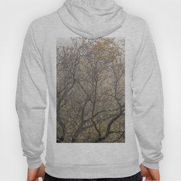Autumnal tree branches Hoody