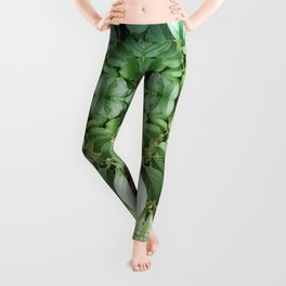 ~°* Awash //in//the// Pleasant ● Perpetual *°~ Leggings