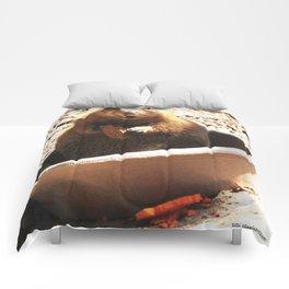 A Bowl Of Groundhog And Veggies Comforters