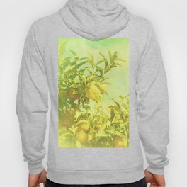 Mandarine Tree Hoody