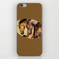 HORSES-Gunmetal iPhone & iPod Skin