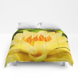 Nelumbo Lutea II Comforters